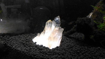 水槽を水晶でレイアウ